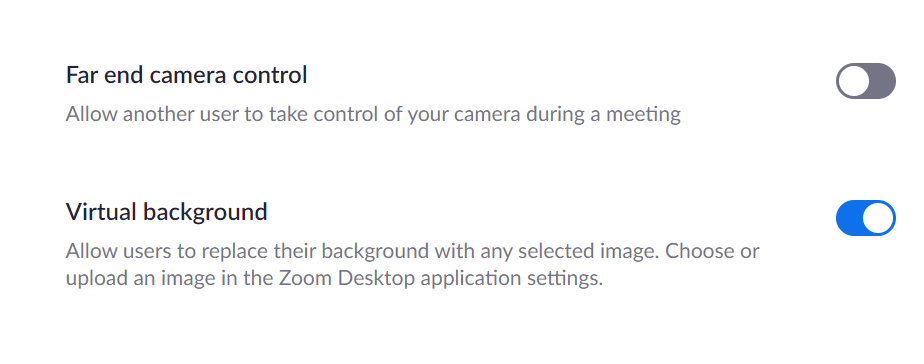 Allow Virtual Background on Zoom